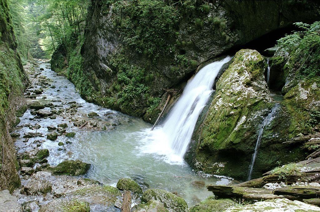 Valea Galbenei
