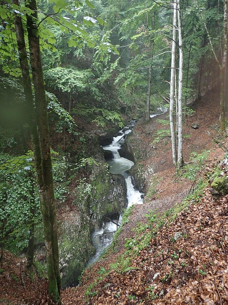 Valea Galbenei13