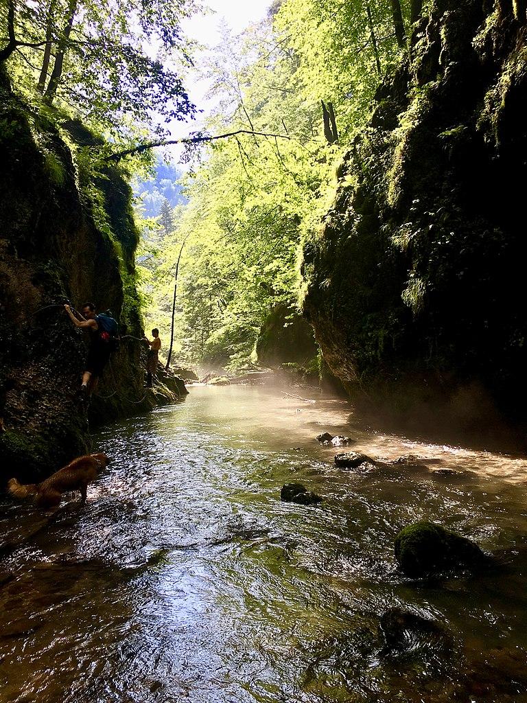 Valea Galbenei133