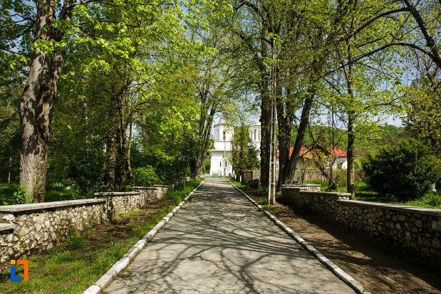 alee-ce-duce-la-biserica-sf-gheorghe-domnesc-1677-din-ocnele-mari-judetul-valcea.jpg