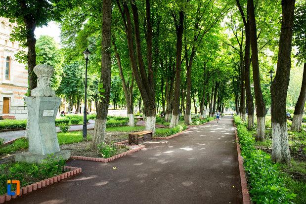 alee-cu-copaci-din-gradina-publica-sau-parcul-central-din-tecuci-judetul-galati.jpg