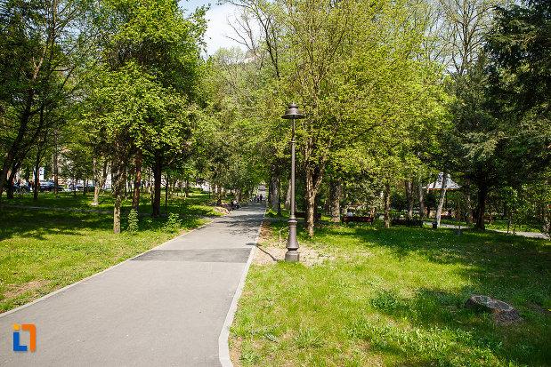 alee-cu-copaci-din-parcul-cetate-din-deva-judetul-hunedoara.jpg