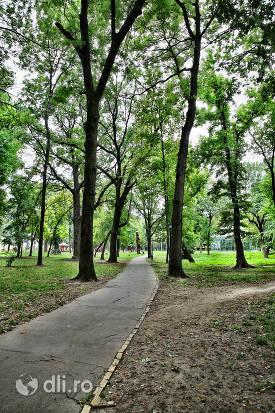 alee-cu-copaci-din-parcul-dendrologic-carei.jpg