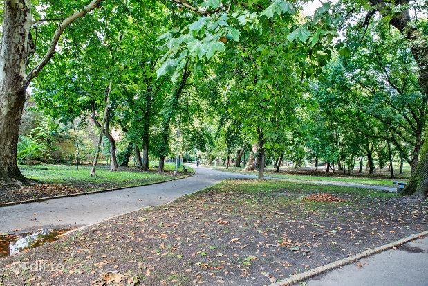 alee-de-plimbare-gradina-romei-din-satu-mare.jpg