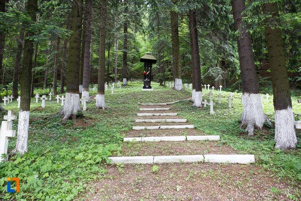alee-din-cimitirul-eroilor-din-azuga-judetul-prahova.jpg