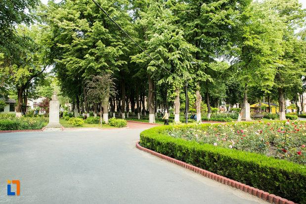 alee-din-gradina-publica-sau-parcul-central-din-tecuci-judetul-galati.jpg