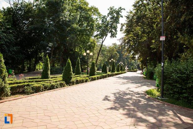 alee-din-parcul-mihai-eminescu-din-botosani-judetul-botosani.jpg