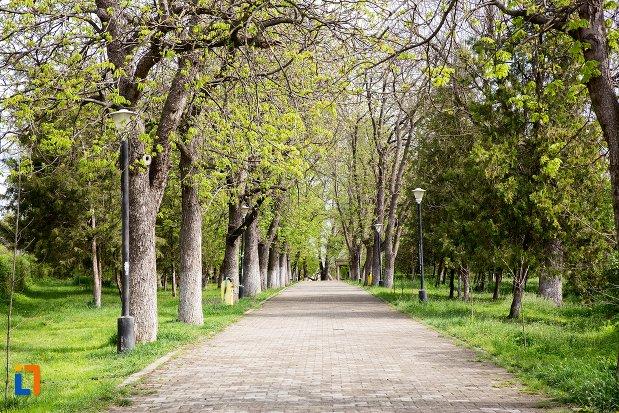 alee-din-parcul-municipal-din-aiud-judetul-alba.jpg