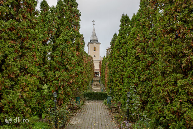 alee-spre-biserica-ortodoxa-sfintii-arhangheli-mihail-si-gavril-din-salajeni-judetul-salaj.jpg