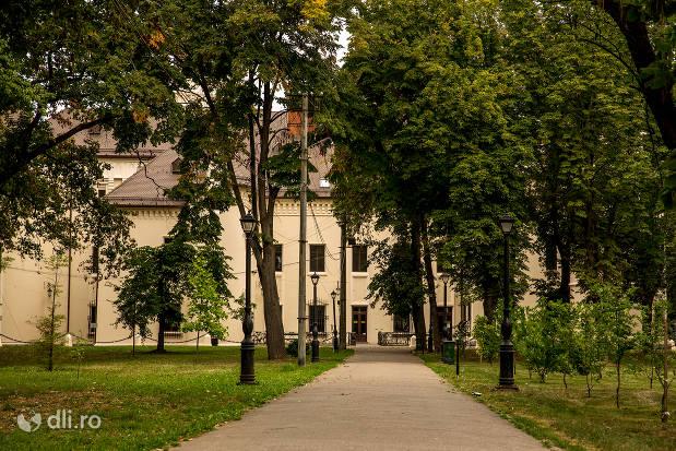 alee-spre-castelul-karolyi-din-carei.jpg