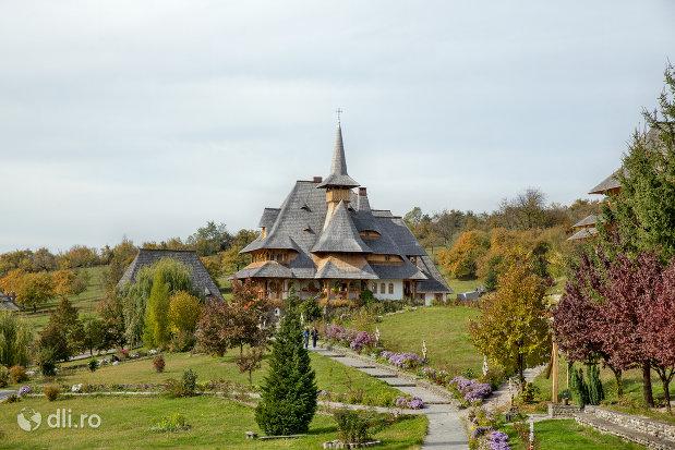 alee-spre-manastirea-barsana-judetul-maramures.jpg