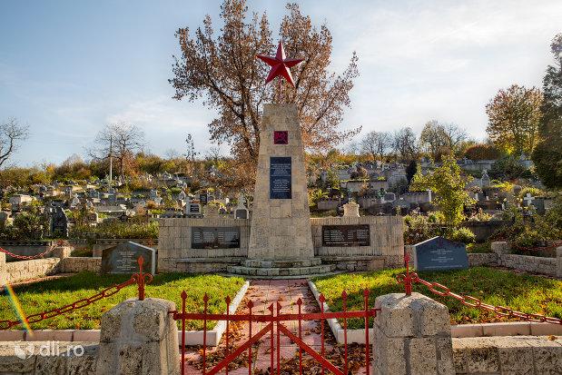 alee-spre-monumentul-din-cimitirul-eroilor-din-zalau-judetul-salaj.jpg