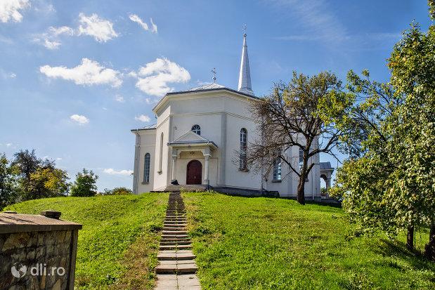 aleea-catre-biserica-reformata-din-orasul-nou-judetul-satu-mare.jpg