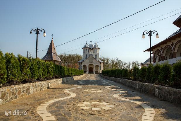 aleea-spre-manastirea-scarisoara-noua-judetul-satu-mare.jpg