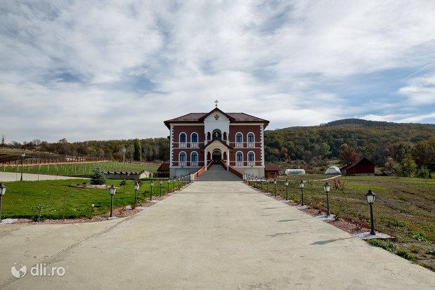 aleea-spre-palatul-episcopiei-salajului-din-zalau-judetul-salaj.jpg