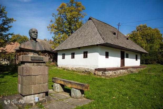 ansamblul-muzeal-si-monumentul-lui-dr-vasile-lucaciu-din-sisesti-judetul-maramures-vedere-de-ansamblu.jpg