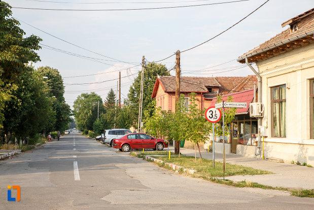 ansamblul-urban-str-alexandru-colfescu-din-alexandria-judetul-teleorman.jpg