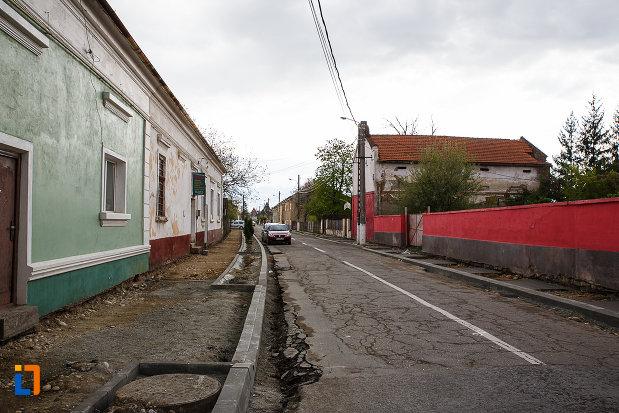 ansamblul-urban-str-mihai-viteazul-din-hateg-judetul-hunedoara-monument-de-arhitectura.jpg