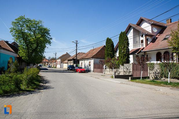 ansamblul-urban-str-primaverii-din-orastie-judetul-hunedoara.jpg
