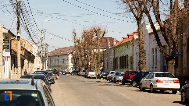 ansamblul-urban-str-teilor-din-alba-iulia-judetul-alba.jpg