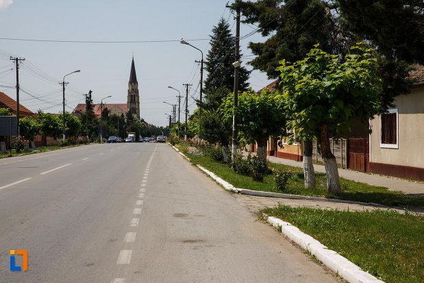 ansamblul-urban-str-victoriei-si-mihai-viteazul-din-deta-judetul-timis-fotografie-cu-cladirile-componente.jpg
