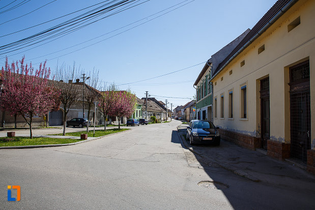 ansamblul-urban-str-viilor-din-orastie-judetul-hunedoara-monument-arhitectural.jpg