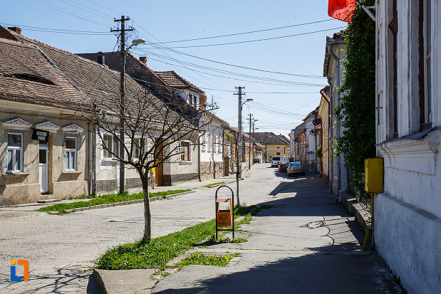 ansamblul-urban-str-viilor-din-orastie-judetul-hunedoara.jpg
