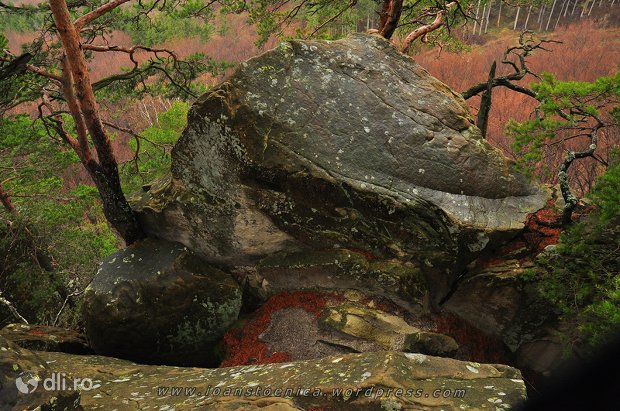 asezarile-rupestre-din-muntii-buzaului.jpg