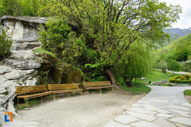 bancute-aflate-la-manastirea-turnu-din-pausa-judetul-valcea.jpg