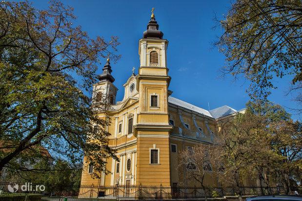 bazilica-romano-catolica-din-oradea-judetul-bihor-vazuta-din-lateral.jpg
