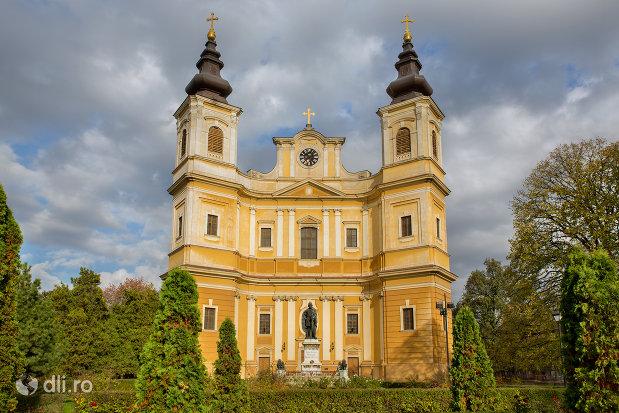 bazilica-romano-catolica-din-oradea-judetul-bihor.jpg