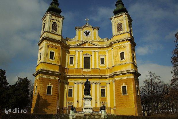 bazilica-romano-catolica-din-oradea.jpg
