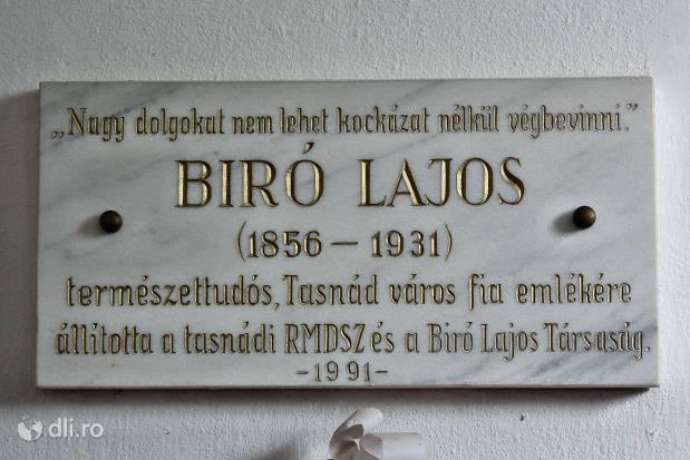 biro-lajos-biserica-reformata-tasnad.jpg