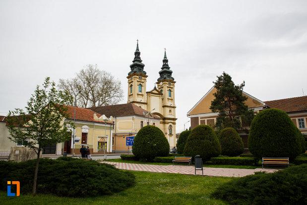 biserica-ortodoxa-adormirea-maicii-domnului-din-lugoj-judetul-timis-vazuta-de-la-distanta.jpg