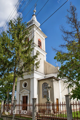 biserica-sf-arhangheli-mihail-si-gavril-din-viile-satu-mare-judetul-satu-mare-gard-si-intrare.jpg