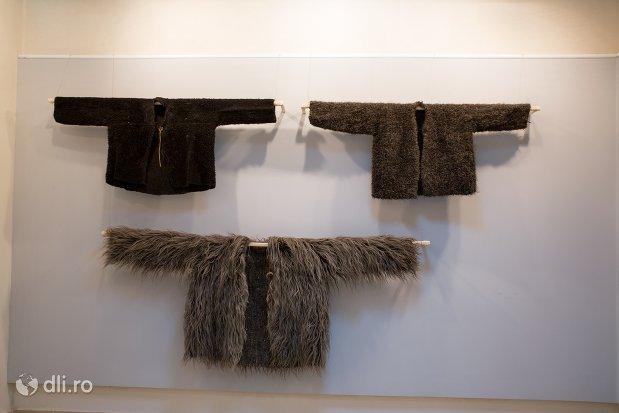 blana-uios-expuse-la-muzeul-tarii-oasului-din-negresti-oas-judetul-satu-mare.jpg
