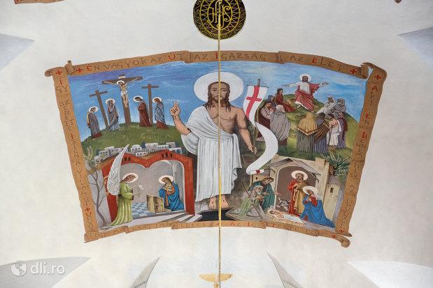 bolta-pictata-din-biserica-manastirii-capucinilor-vizita-sf-fecioare-la-sf-elisabeta-din-oradea-judetul-bihor.jpg