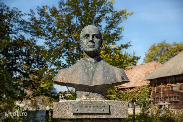 bust-din-ansamblul-muzeal-si-monumentul-lui-dr-vasile-lucaciu-din-sisesti-judetul-maramures.jpg