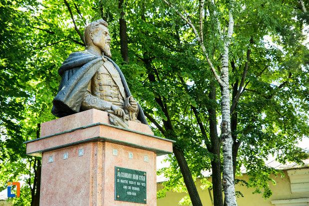 bustul-domnitorului-alexandru-ioan-cuza-din-tecuci-judetul-galati-vazut-dintr-o-parte.jpg
