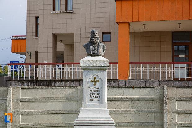 bustul-lui-andrei-saguna-din-hateg-judetul-hunedoara.jpg