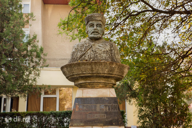 bustul-lui-bocskai-istvan-din-valea-lui-mihai-judetul-bihor.jpg