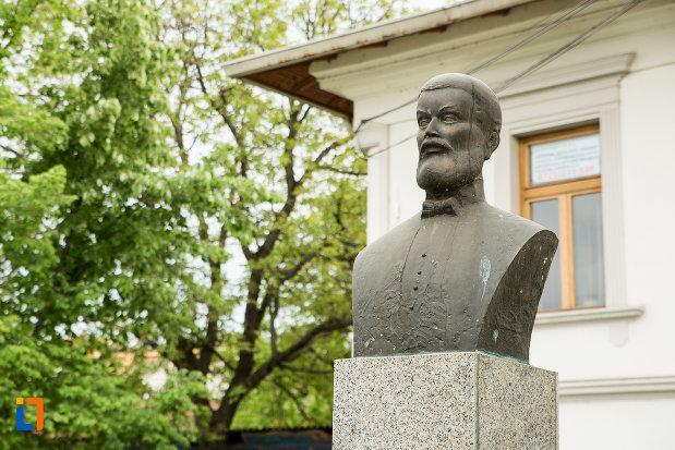bustul-lui-constantin-stanciovici-branisteanu-din-targu-jiu-judetul-gorj-vazut-din-lateral.jpg