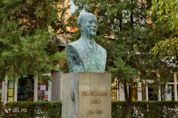 bustul-lui-dr-andrassy-erno-din-valea-lui-mihai-judetul-bihor-vazut-din-lateral.jpg