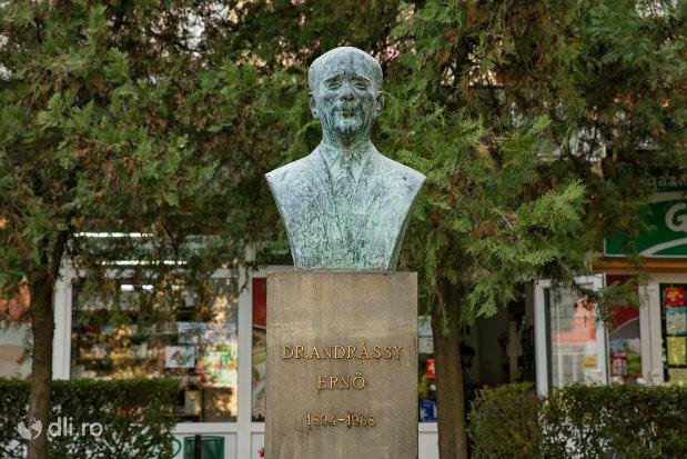 bustul-lui-dr-andrassy-erno-din-valea-lui-mihai-judetul-bihor.jpg