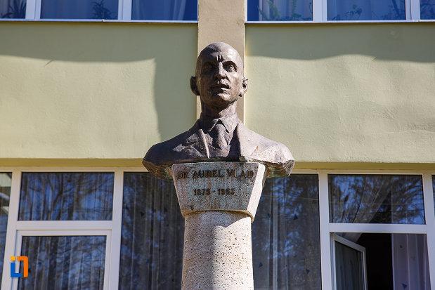bustul-lui-dr-aurel-vlad-din-orastie-judetul-hunedoara-imagine-apropiata.jpg
