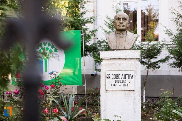 bustul-lui-grigore-antipa-din-botosani-judetul-botosani.jpg