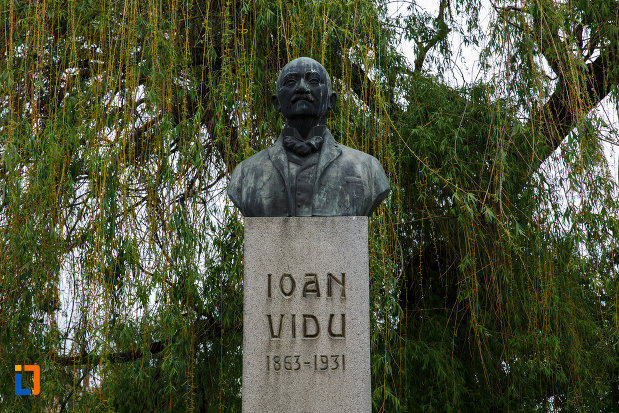 bustul-lui-ioan-vidu-din-lugoj-judetul-timis-in-prim-plan.jpg