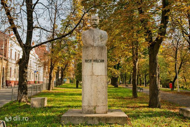 bustul-lui-iosif-vulcan-din-oradea-judetul-bihor.jpg