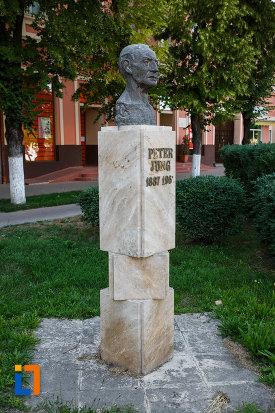 bustul-lui-peter-jung-din-jimbolia-judetul-timis-din-lateral.jpg