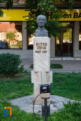 bustul-lui-peter-jung-din-jimbolia-judetul-timis.jpg
